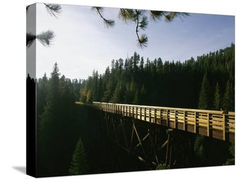 A Cyclist on the Mickelson Trail Bridge which Runs Through the Heart of the Black Hills-Bobby Model-Stretched Canvas Print