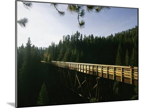 A Cyclist on the Mickelson Trail Bridge which Runs Through the Heart of the Black Hills-Bobby Model-Mounted Photographic Print