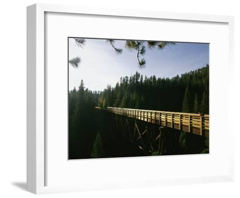 A Cyclist on the Mickelson Trail Bridge which Runs Through the Heart of the Black Hills-Bobby Model-Framed Art Print