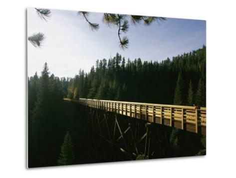 A Cyclist on the Mickelson Trail Bridge which Runs Through the Heart of the Black Hills-Bobby Model-Metal Print
