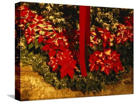 Christmas Time at the Catholic Cathedral of the Risen Christ--Stretched Canvas Print