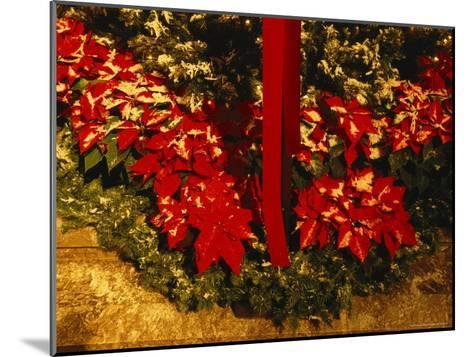 Christmas Time at the Catholic Cathedral of the Risen Christ--Mounted Photographic Print