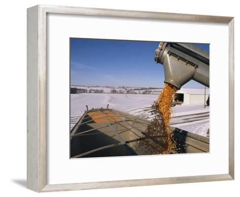 Corn Pours from an Auger into a Grain Truck-Joel Sartore-Framed Art Print