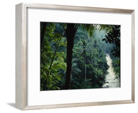 Agung River Cuts Through Desnse Jungle and Palm Trees--Framed Art Print