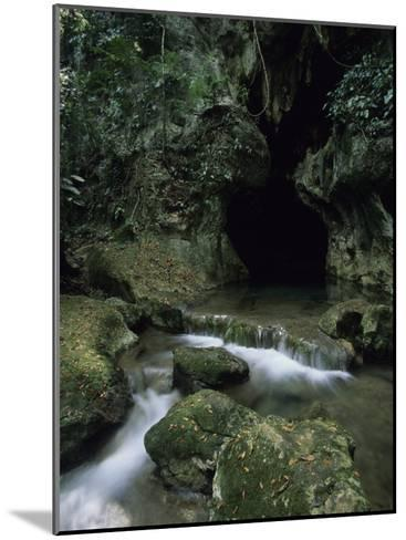 Water Flows from the Mouth of the Tunichil Muknal Cave--Mounted Photographic Print