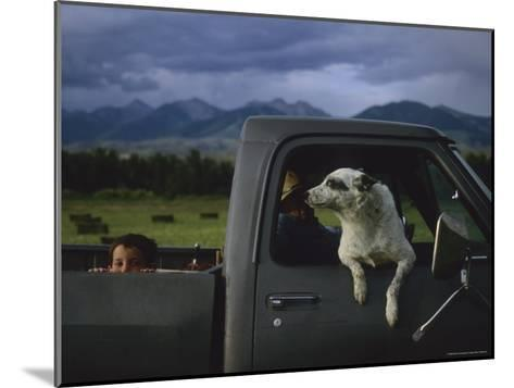 A Young Boy and His Dog Ride in His Grandfathers Truck-Joel Sartore-Mounted Photographic Print