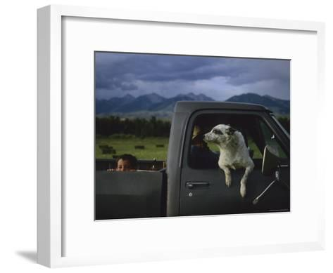 A Young Boy and His Dog Ride in His Grandfathers Truck-Joel Sartore-Framed Art Print