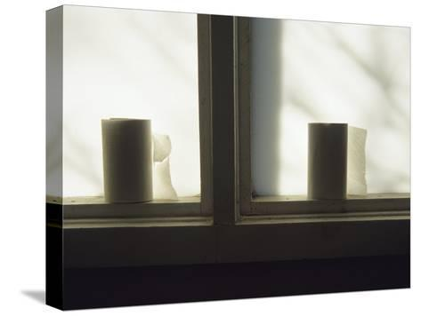 Toilet Paper Rolls Line the Sill of a Window-Raymond Gehman-Stretched Canvas Print
