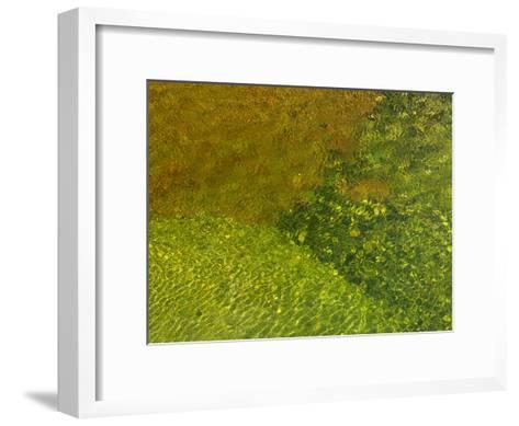 Pebbles on a Creek Bottom Seen Through Water-Raul Touzon-Framed Art Print