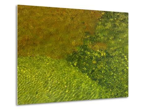 Pebbles on a Creek Bottom Seen Through Water-Raul Touzon-Metal Print