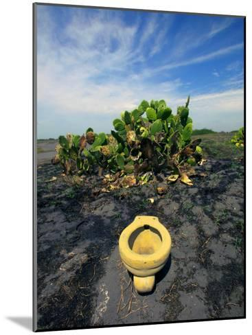 An Toilet on a Black Sand Beach with Cacti-Raul Touzon-Mounted Photographic Print