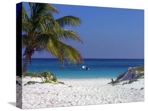 A Palm Tree on a White Sand Beach and a Motorboat-Raul Touzon-Stretched Canvas Print
