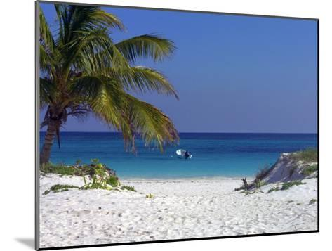 A Palm Tree on a White Sand Beach and a Motorboat-Raul Touzon-Mounted Photographic Print