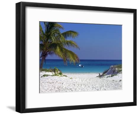 A Palm Tree on a White Sand Beach and a Motorboat-Raul Touzon-Framed Art Print
