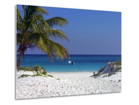 A Palm Tree on a White Sand Beach and a Motorboat-Raul Touzon-Metal Print