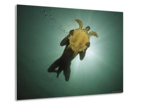 Underwater View of Swimmer and Turtle Silhouetted against the Sun-Nicolas Reynard-Metal Print