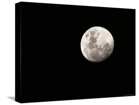 Large, Clear-Featured Moon on a Black Background, Chobe National Park, Botswana-Beverly Joubert-Stretched Canvas Print