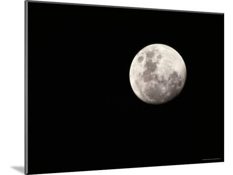 Large, Clear-Featured Moon on a Black Background, Chobe National Park, Botswana-Beverly Joubert-Mounted Photographic Print