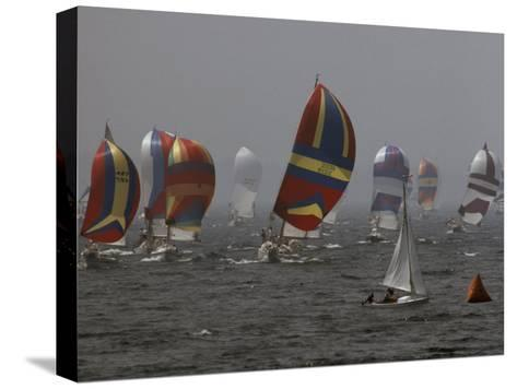 Spinnakered Boats Race in the Plattsburgh Mayor's Cup, Lake Champlain-Phil Schermeister-Stretched Canvas Print