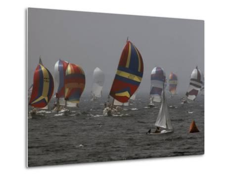 Spinnakered Boats Race in the Plattsburgh Mayor's Cup, Lake Champlain-Phil Schermeister-Metal Print