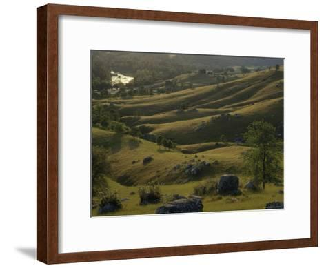 Green Foothills in Spring with South Fork of the American River near Coloma, California-Phil Schermeister-Framed Art Print