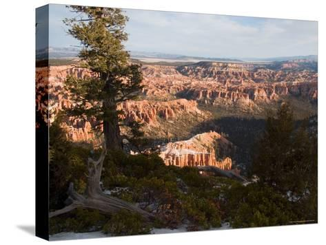 A View into the Hoodoos and Rock Formations of the Park at Sunrise, Bryce Canyon, Utah-Taylor S^ Kennedy-Stretched Canvas Print