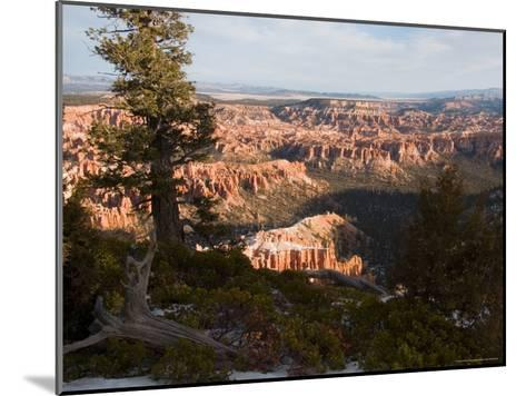 A View into the Hoodoos and Rock Formations of the Park at Sunrise, Bryce Canyon, Utah-Taylor S^ Kennedy-Mounted Photographic Print