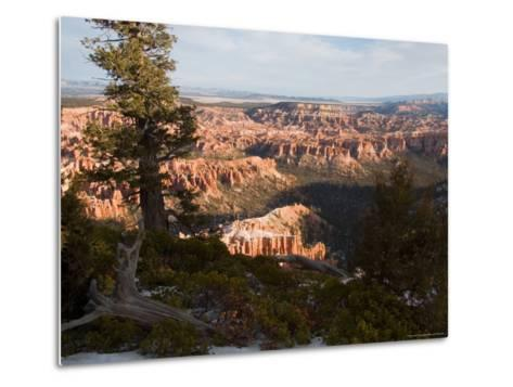 A View into the Hoodoos and Rock Formations of the Park at Sunrise, Bryce Canyon, Utah-Taylor S^ Kennedy-Metal Print
