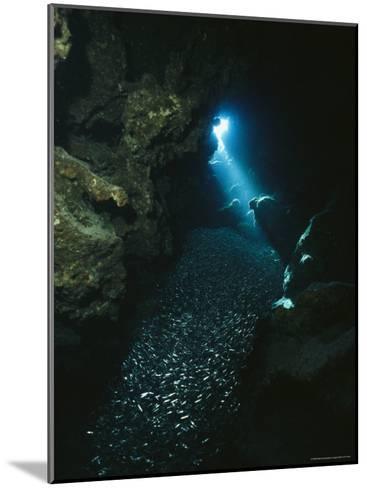 A Beam of Sunlight Illuminates an Underwater Cave-Raul Touzon-Mounted Photographic Print