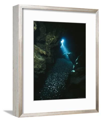 A Beam of Sunlight Illuminates an Underwater Cave-Raul Touzon-Framed Art Print