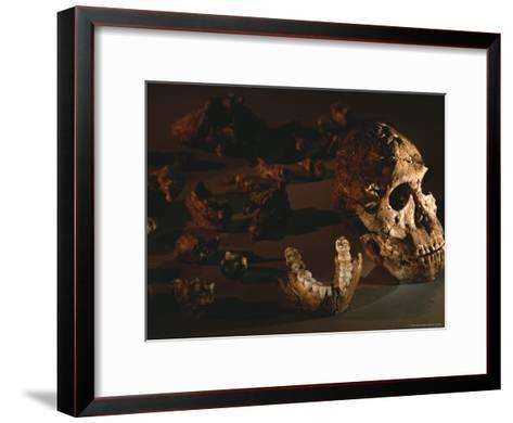 A Two-Million-Year-Old Fossil of Australopithecus Robustus-Kenneth Garrett-Framed Art Print