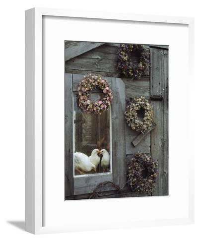 Dried Flower Wreaths Adorn a Wooden Wall Near a Window with Doves-Bill Curtsinger-Framed Art Print