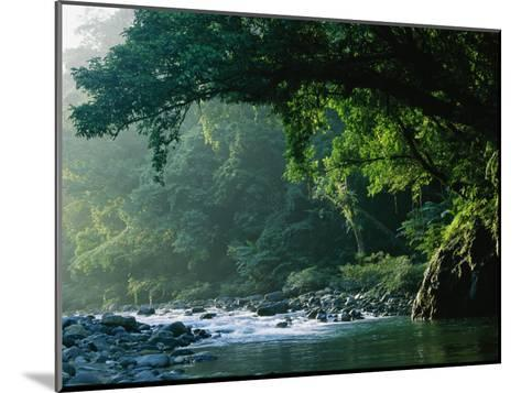 A River Flows Through a Northern Sierra Madre Natural Park Rainforest-Tim Laman-Mounted Photographic Print