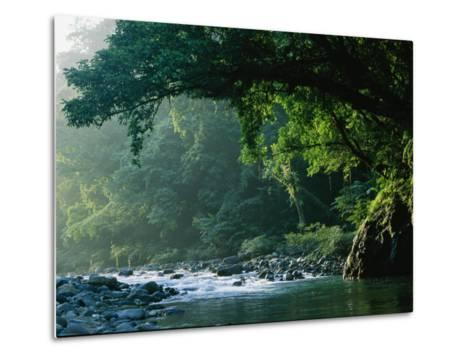 A River Flows Through a Northern Sierra Madre Natural Park Rainforest-Tim Laman-Metal Print