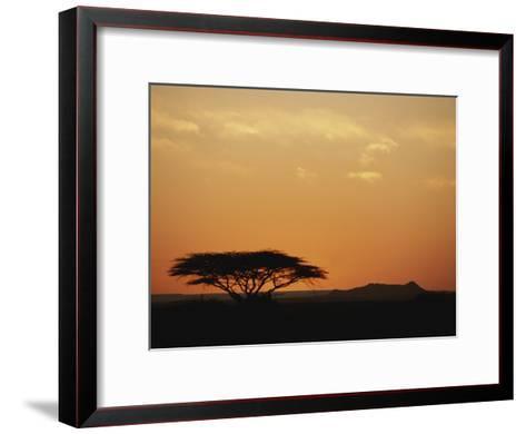 Twilight View of a Lone Tree on the Savanna-Kenneth Garrett-Framed Art Print
