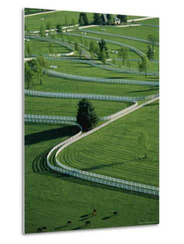 Aerial View of Donamire Farms Fenced Pastures-Melissa Farlow-Metal Print