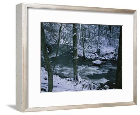A Creek Rushes by in a Snow-Covered Forest-Stephen Alvarez-Framed Art Print