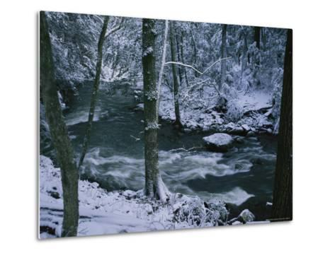 A Creek Rushes by in a Snow-Covered Forest-Stephen Alvarez-Metal Print