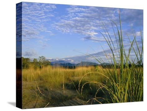 Hills Loom in the Distance on a Grassland under a Cloud Sprinkled Sky--Stretched Canvas Print
