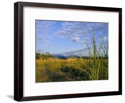 Hills Loom in the Distance on a Grassland under a Cloud Sprinkled Sky--Framed Art Print