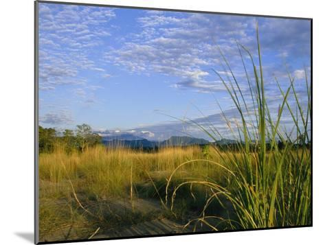 Hills Loom in the Distance on a Grassland under a Cloud Sprinkled Sky--Mounted Photographic Print