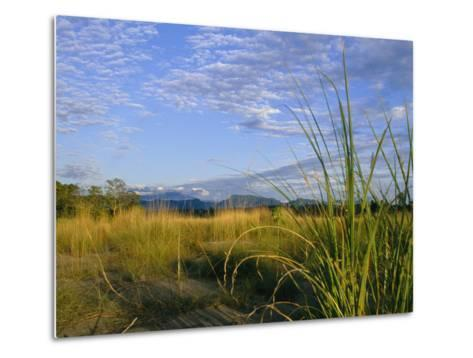 Hills Loom in the Distance on a Grassland under a Cloud Sprinkled Sky--Metal Print