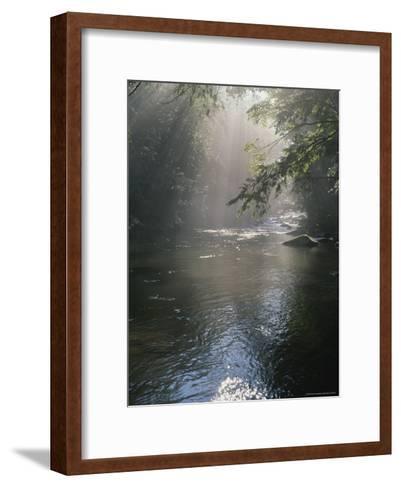 Morning Mist Lifts off the Tellico River-Stephen Alvarez-Framed Art Print