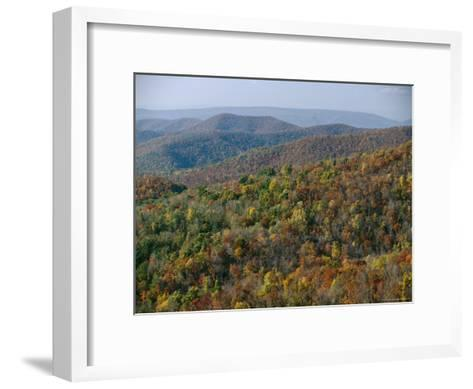 Fall Colors in Forests Along Tanners Ridge, with View of Massanutten Mountain-Raymond Gehman-Framed Art Print