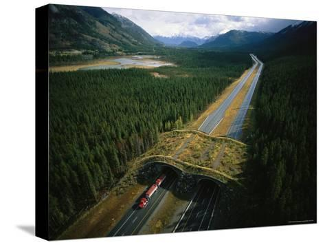 Overpass for Grizzlies and Other Wildlife Spans an Alberta Highway-Joel Sartore-Stretched Canvas Print