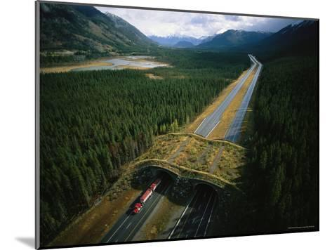 Overpass for Grizzlies and Other Wildlife Spans an Alberta Highway-Joel Sartore-Mounted Photographic Print