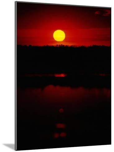 The Setting Sun Creates Reflections on the Waters of Big Cypress Swamp-Raymond Gehman-Mounted Photographic Print
