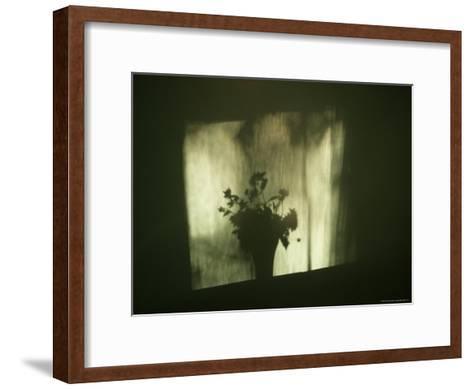 A Shadow of a Vase of Flowers Falls on a Wall-Stephen Alvarez-Framed Art Print