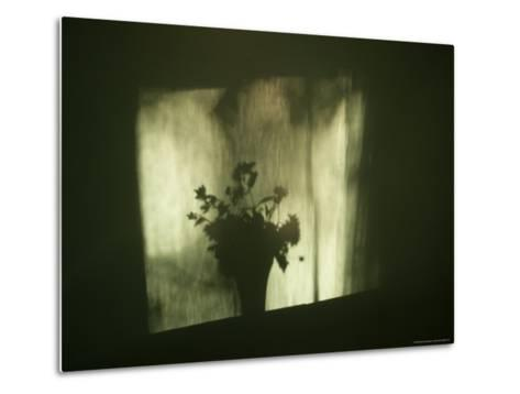 A Shadow of a Vase of Flowers Falls on a Wall-Stephen Alvarez-Metal Print