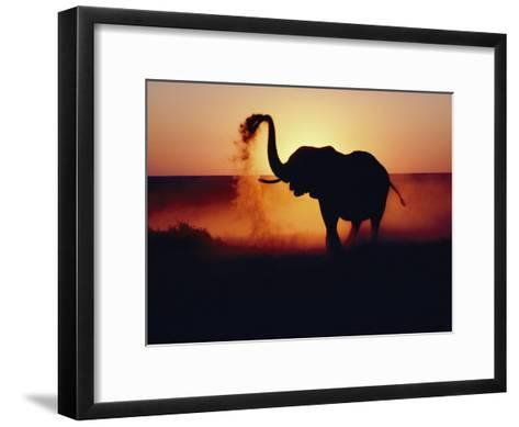 An Elephant Tosses Dust to Coat its Hide for Protection against the African Sun-Annie Griffiths-Framed Art Print